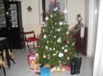 Natale,25 Dicembre,Auguri,feste,desiderio,felicità,speranza,albero di Natale,Babbo Natale,gioia