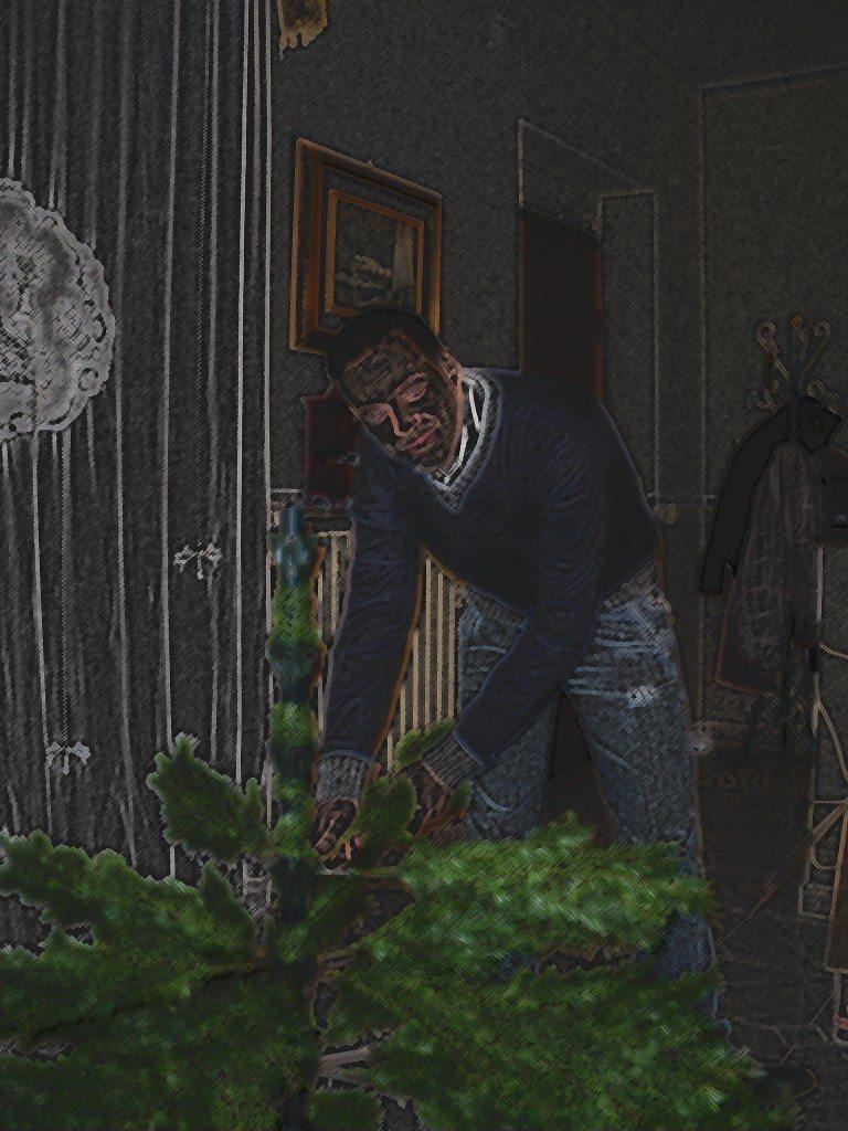 Il giorno dell'addobbo dell'albero