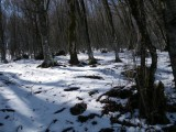 Mercanti della Neve